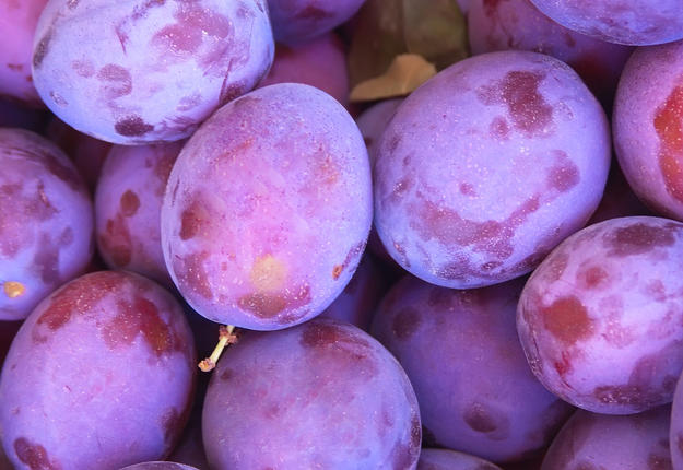 Recettes aux prunes